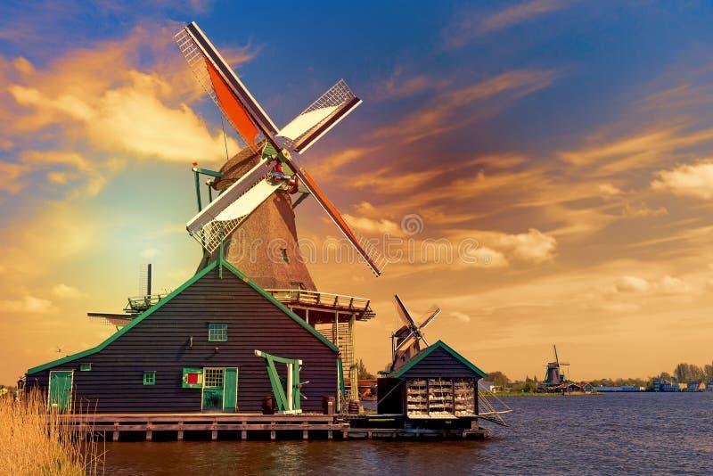 荷兰人典型的风景 反对蓝色多云天空在Zaanse Schans村庄,荷兰的传统老荷兰风车在期间 免版税库存图片