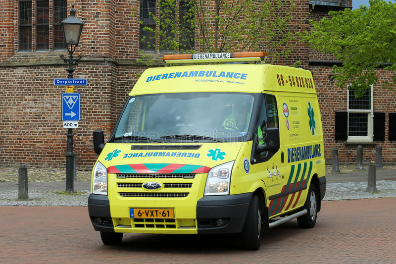 荷兰动物救护车 库存照片