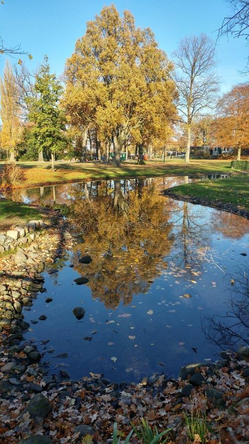 荷兰在秋天 免版税库存图片