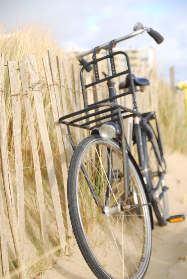 荷兰自行车 库存照片