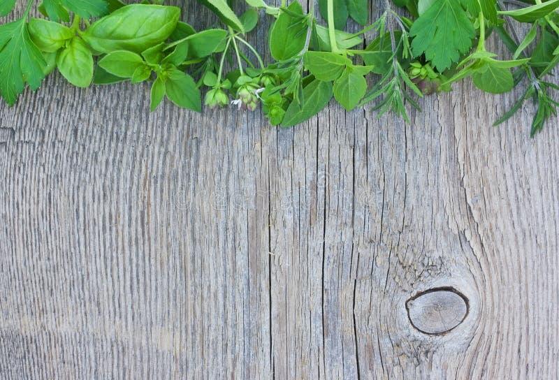 荷兰芹,牛至,在木背景的蓬蒿 库存图片