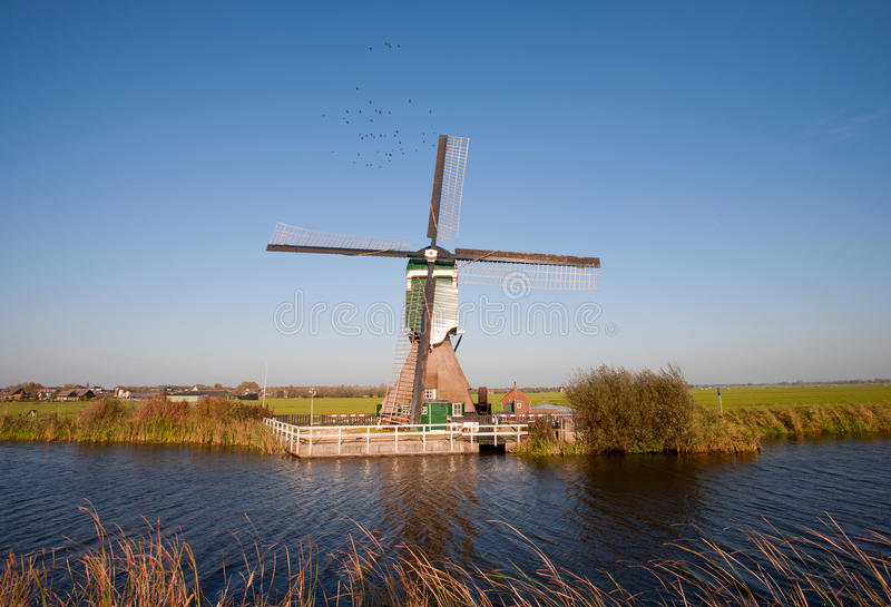 荷兰语传统风车 库存照片