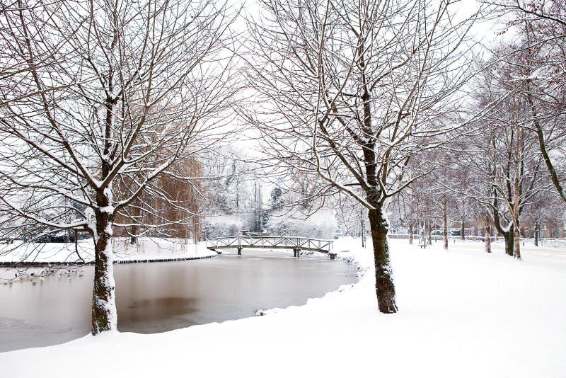 荷兰语公园冬天 免版税库存照片