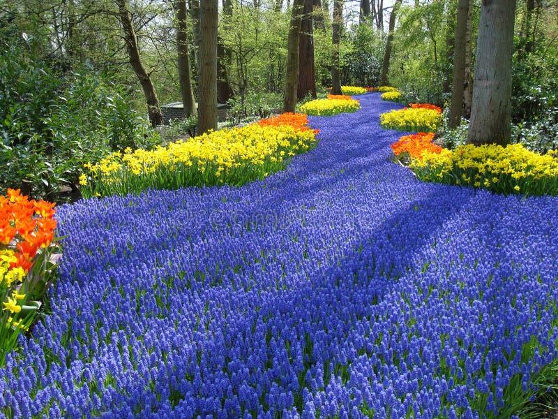 荷兰语花园运输路线春天 免版税图库摄影