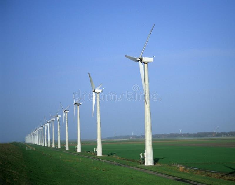荷兰语windpark 免版税图库摄影