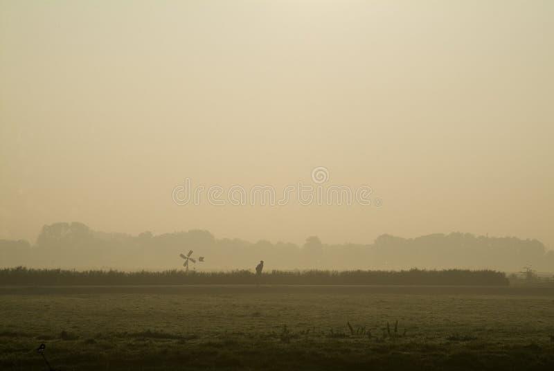 荷兰风景#2 免版税库存图片