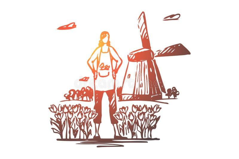 荷兰,郁金香,风车,旅行,标志概念 手拉的被隔绝的传染媒介 库存例证