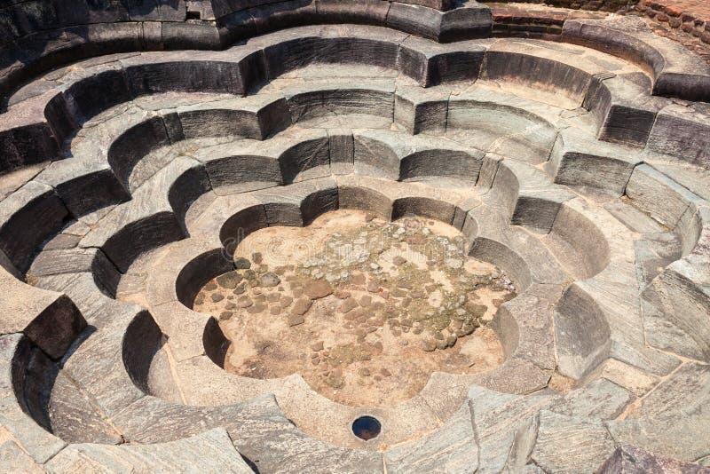 荷花池在Polonnaruwa 免版税库存图片