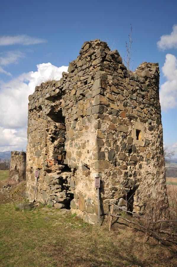 莎丽服城堡 库存照片