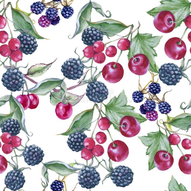黑莓、樱桃和无核小葡萄干背景  无缝的模式 皇族释放例证