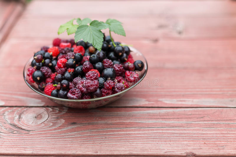 莓和无核小葡萄干的莓果混合 图库摄影