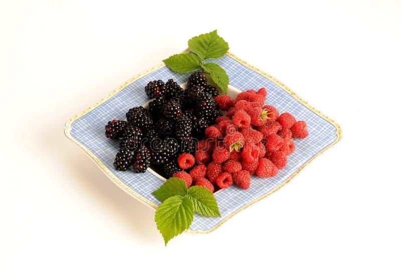 黑莓和莓 免版税图库摄影