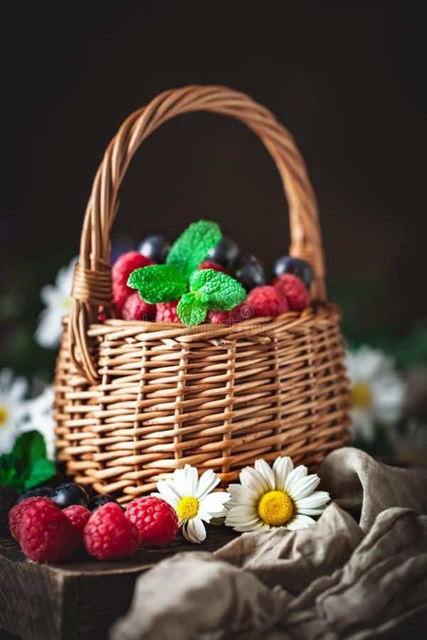 莓和蓝莓在一个篮子与春黄菊和叶子在黑暗的背景 夏天和健康食品概念 免版税图库摄影