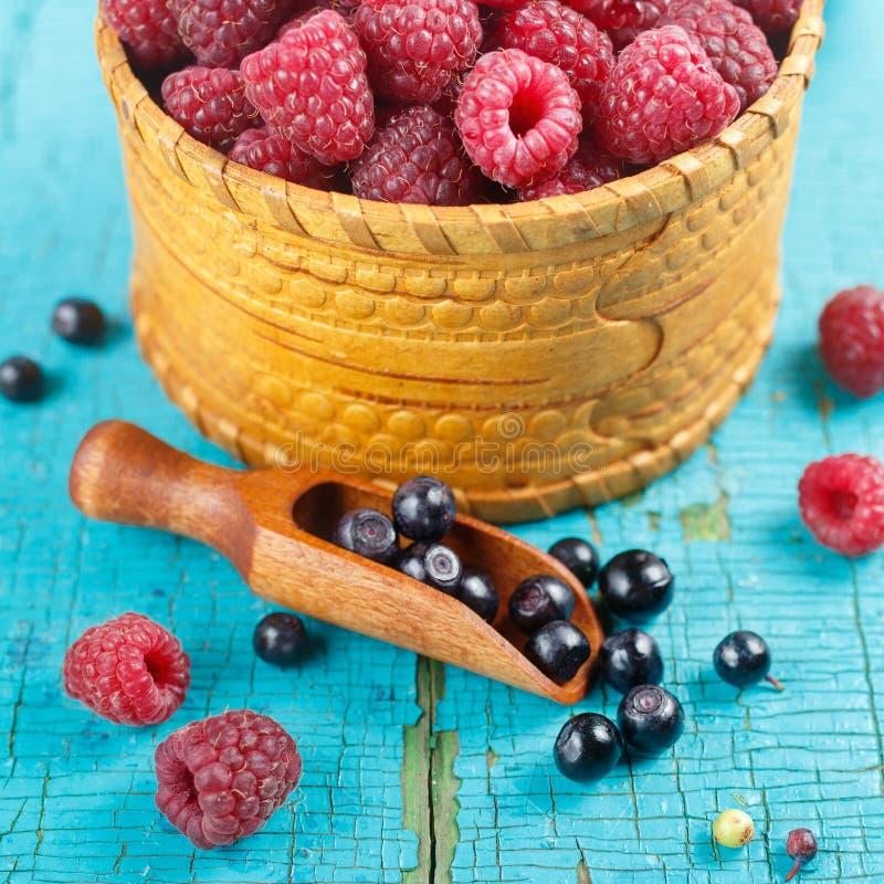 莓和蓝莓 图库摄影
