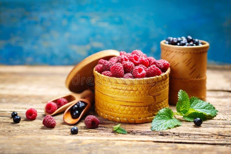 莓和蓝莓 免版税库存照片