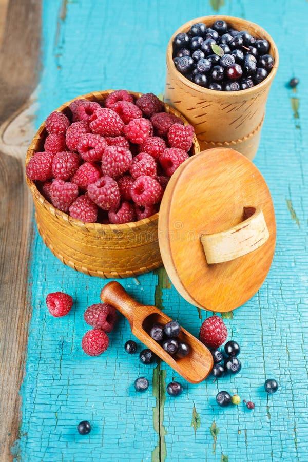 莓和蓝莓 免版税库存图片