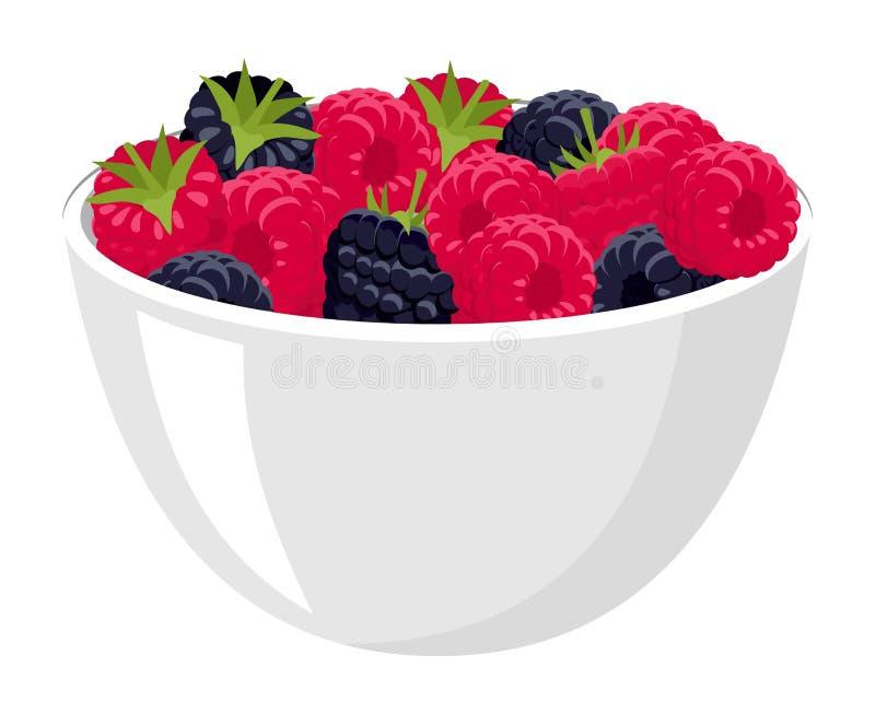莓和黑莓 大堆新鲜的莓和黑莓在白色碗 被隔绝的传染媒介例证  皇族释放例证