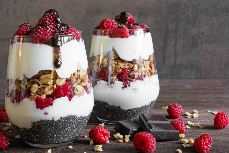 莓在玻璃的酸奶冷甜点与巧克力、格兰诺拉麦片和chia种子 免版税库存图片