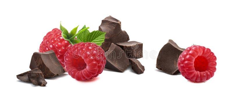 莓在白色背景隔绝的打破的巧克力 免版税库存照片