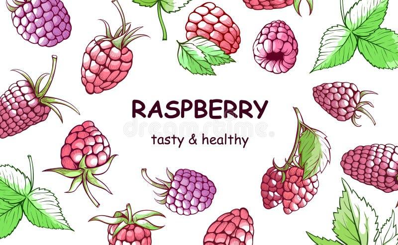 莓手拉的背景,甜和鲜美 皇族释放例证