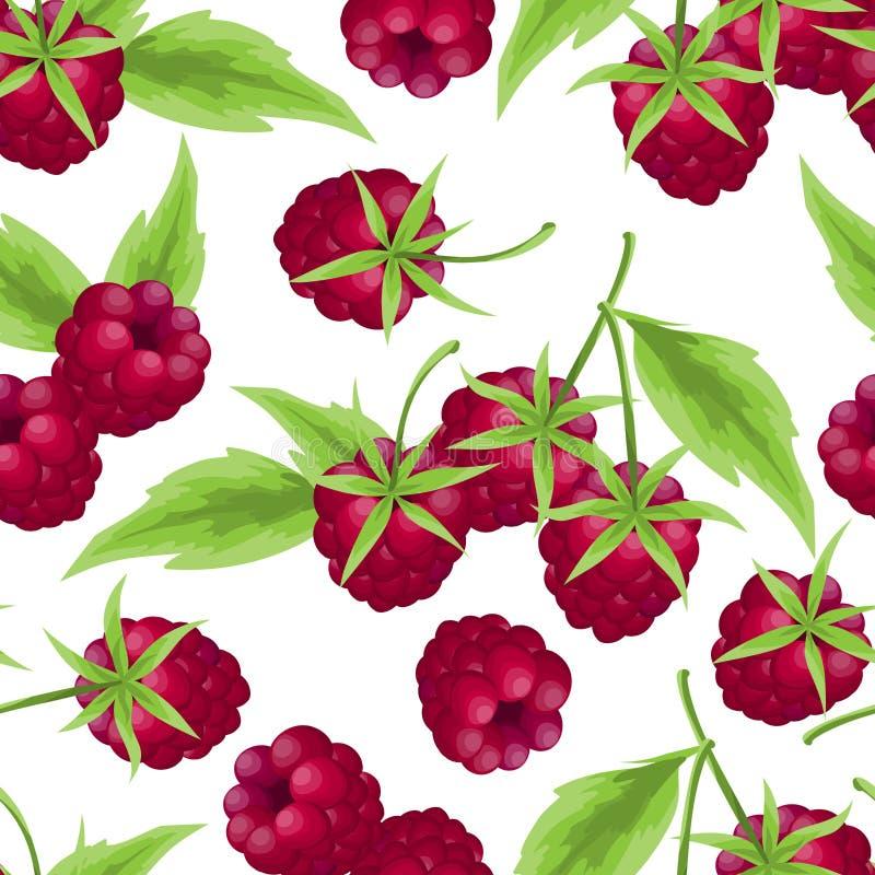 莓无缝的样式 库存例证