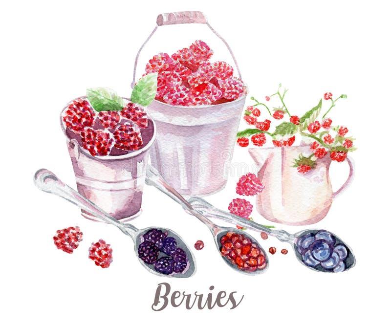 莓果例证 在白色背景的手拉的水彩 向量例证