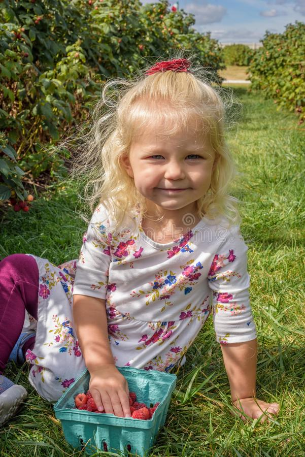 莓果农场的小白肤金发的女孩 免版税库存照片
