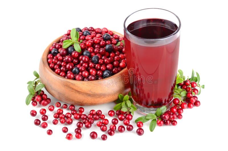 莓果和汁液 免版税库存照片