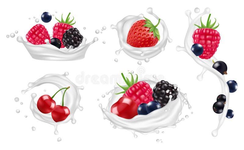 莓果挤奶飞溅传染媒介集合 草莓、莓、蓝莓果子和酸奶飞溅被隔绝的传染媒介 向量例证