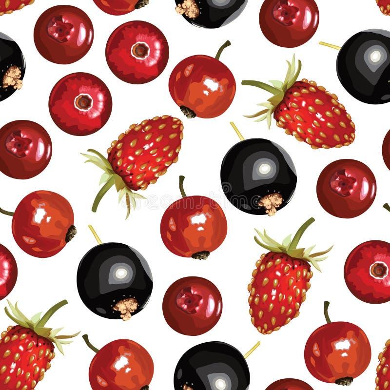 莓果无缝混合的样式 库存例证