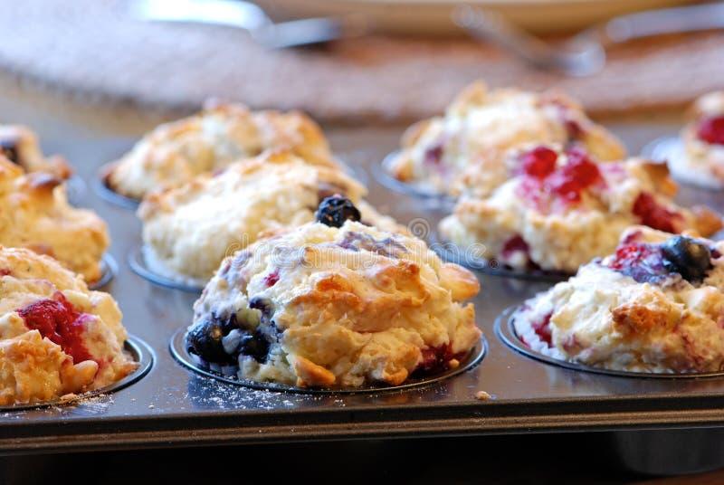 莓果松饼 库存照片