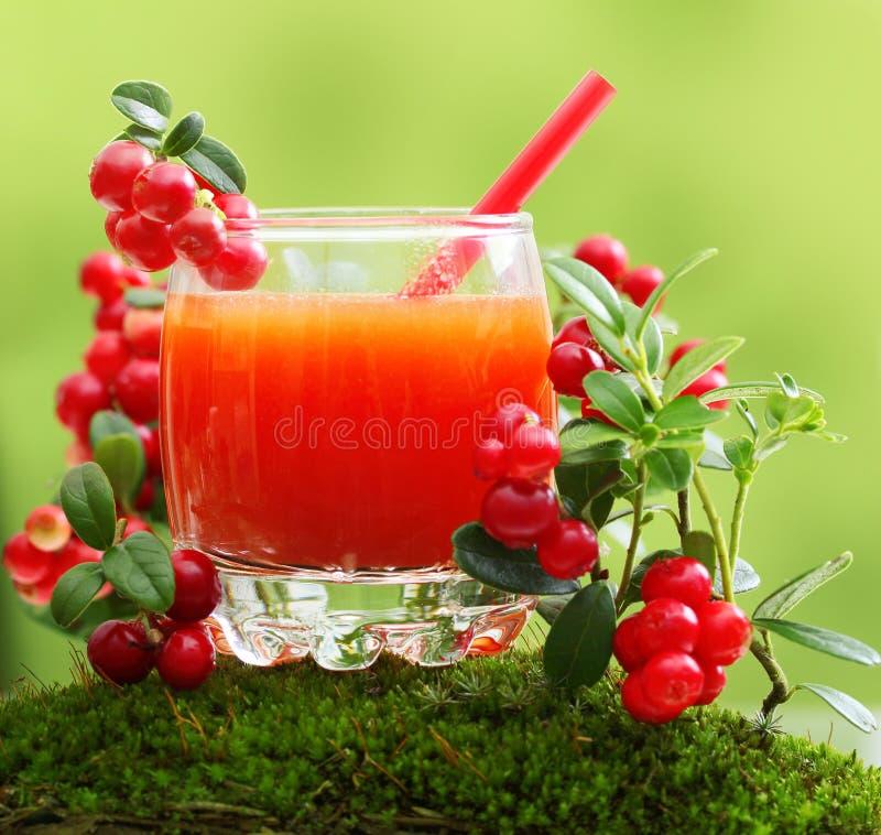 莓果汁和森林越橘 免版税库存照片