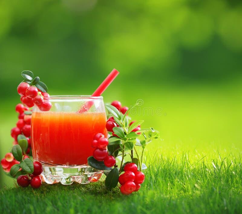 莓果汁和森林越橘 库存图片