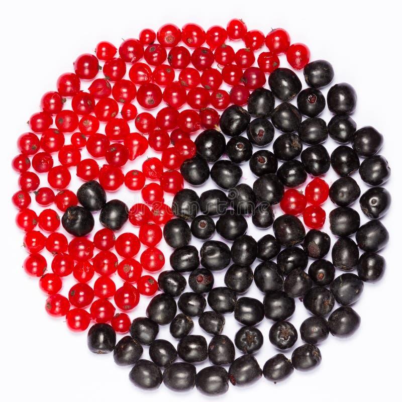 莓果的尹杨 免版税库存图片