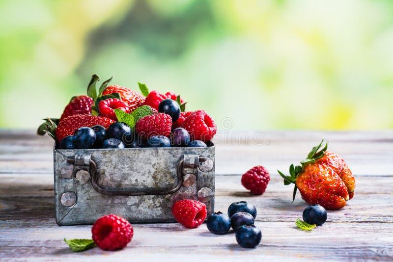 莓果的新混合在一个金属箱子的在白色石背景 免版税库存图片