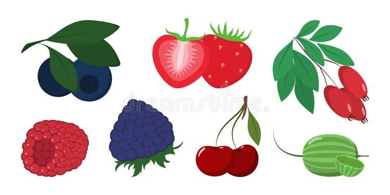 莓果集合 可口成熟食物的汇集 ?? 皇族释放例证