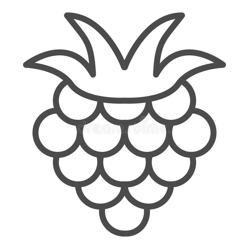 莓概述象,果子标志,健康食品在白色背景隔绝的传染媒介标志 莓果象 库存例证