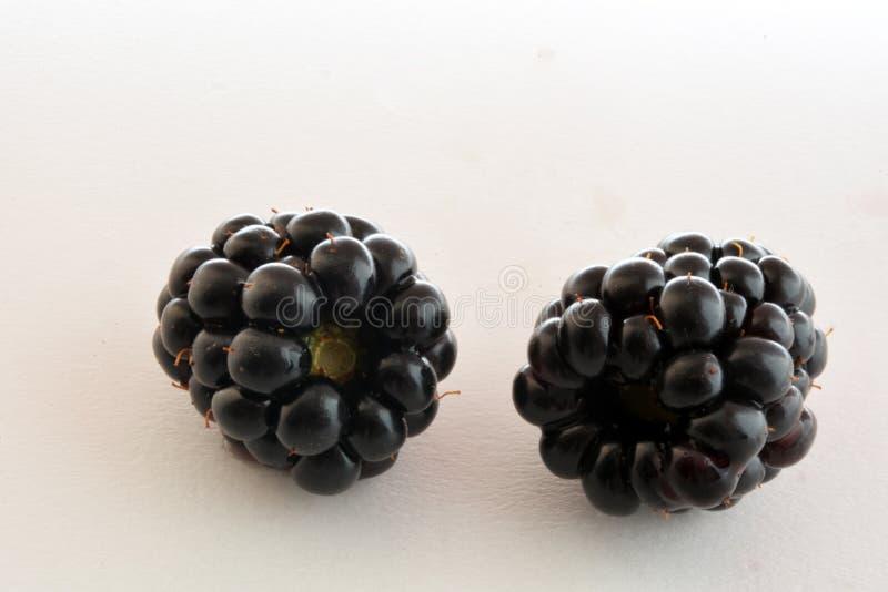 黑黑莓特写镜头,宏观照片, 免版税库存图片