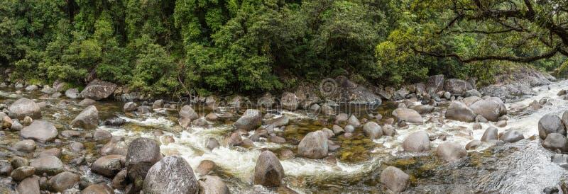 莫斯曼峡谷n Daintree雨林,昆士兰澳大利亚 免版税库存图片