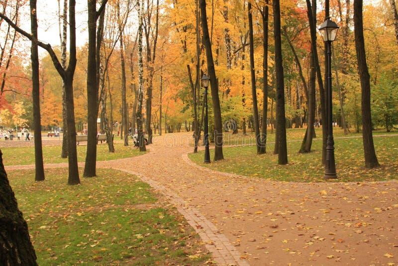 莫斯科公园重新创建