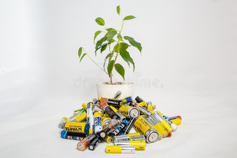 莫斯科,俄罗斯- 2019年4月20日:在罐的一朵活花从堆电池增长 回收电池生态的问题 免版税库存图片