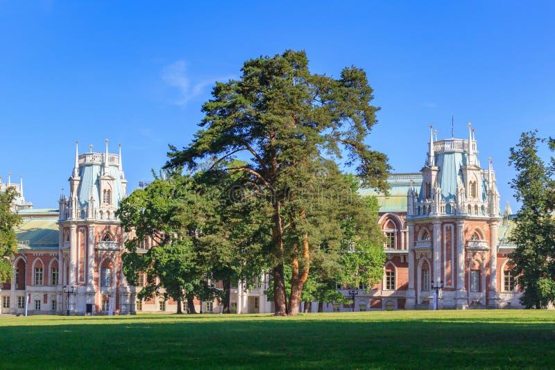 莫斯科,俄罗斯- 2018年8月12日:在草坪的大老杉木在博物馆储备的Tsaritsyno伟大的宫殿前面在一个晴朗的夏天m 免版税库存图片
