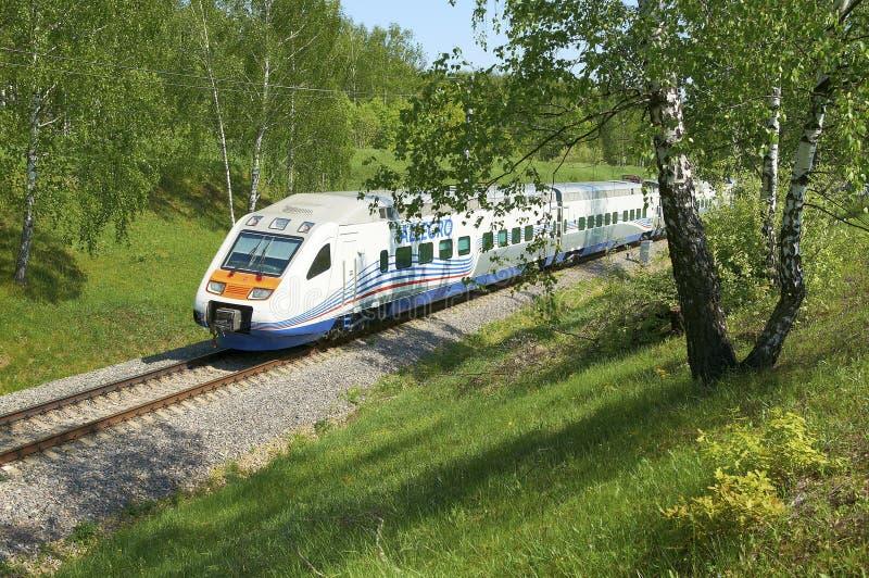 莫斯科, 2010年7月, 12日:高速火车Pendolino Sm6急速的乐章在俄国铁路跑 在桦树中的RZD高速火车 免版税图库摄影