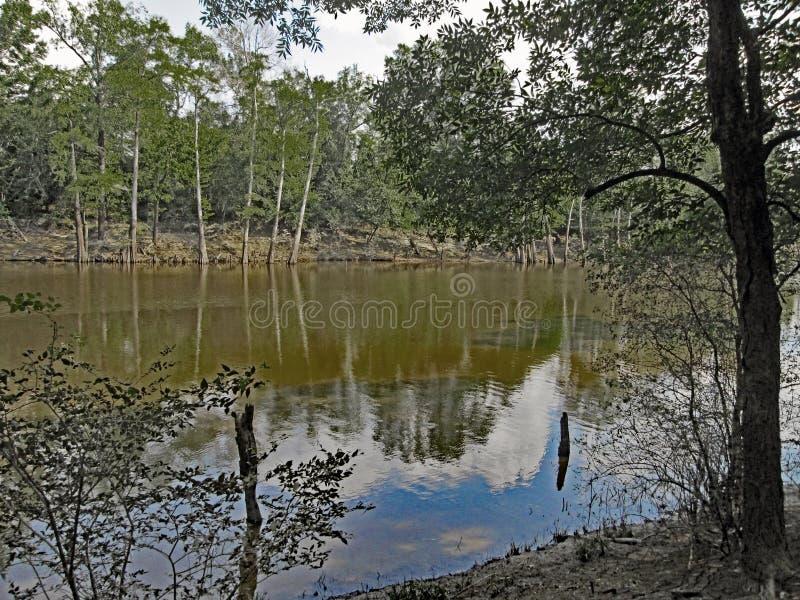 莫罗海湾国家公园 免版税库存照片
