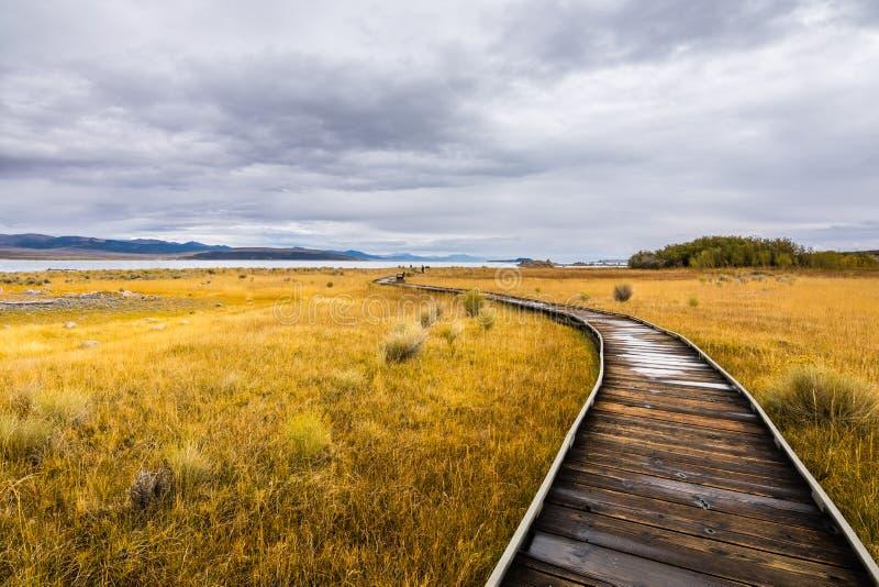 莫诺湖凝灰岩状态自然储备的木木板走道 库存图片