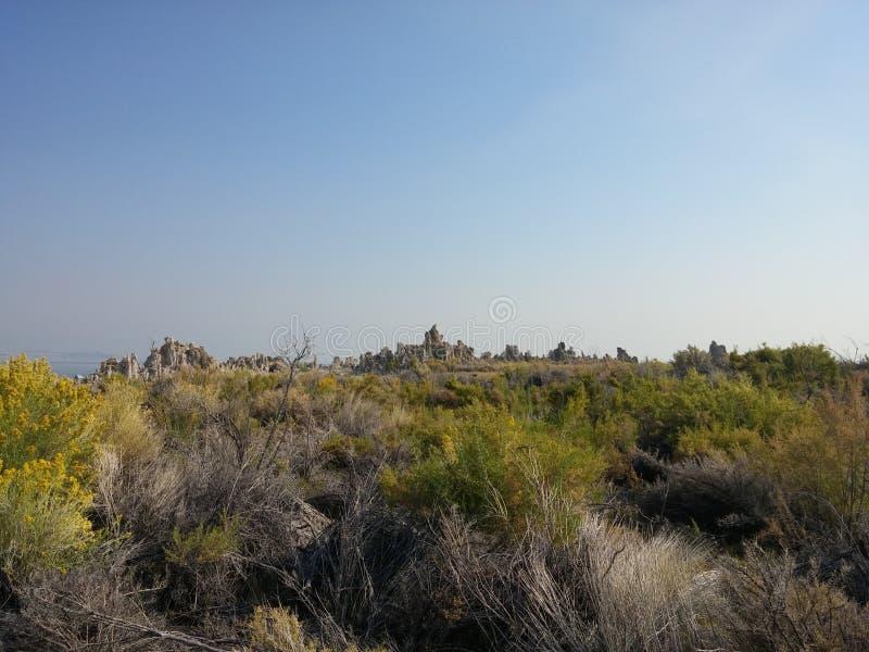 莫诺湖凝灰岩状态自然储备 免版税库存照片