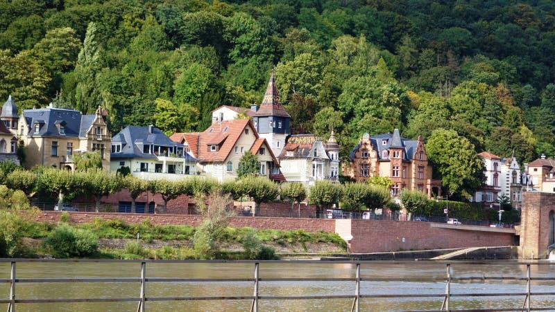 从莱茵河的银行的看法 库存照片