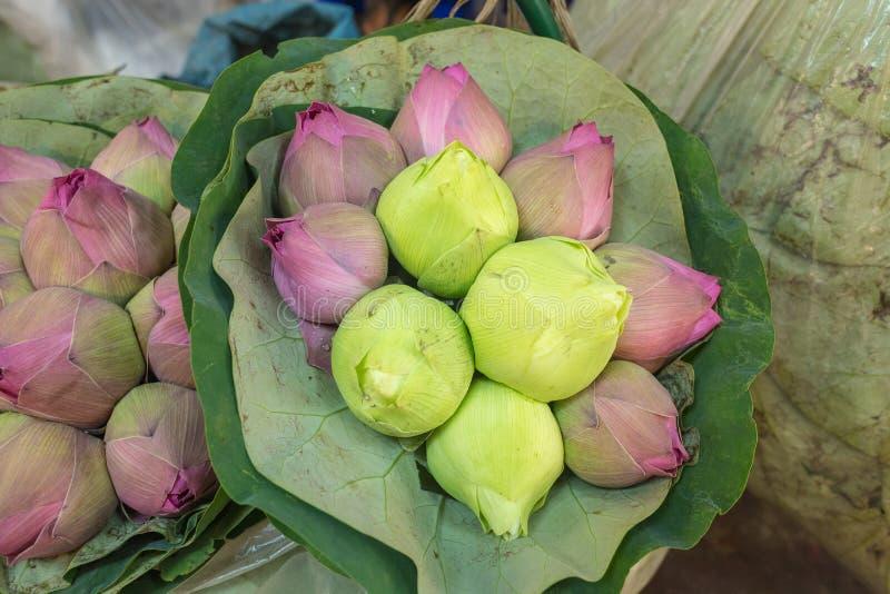 莲花厂在泰国市场上 库存照片