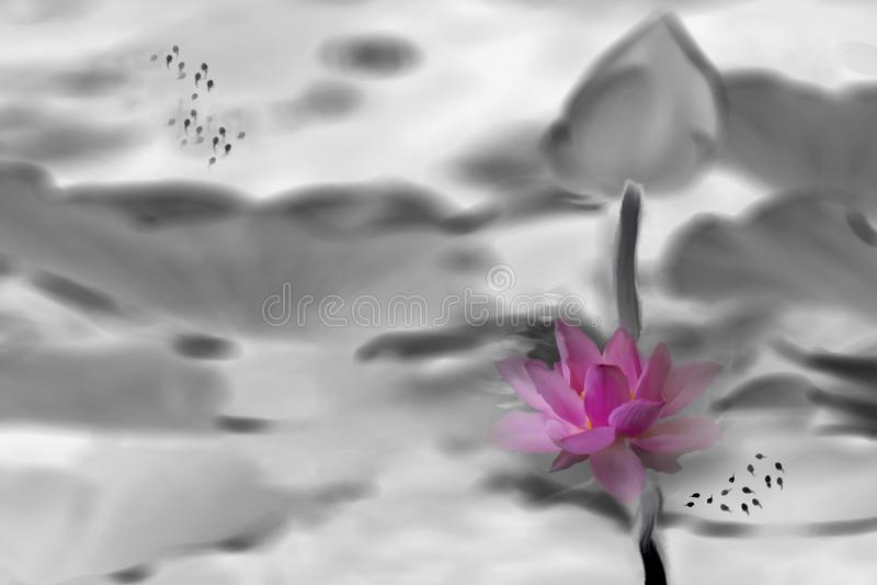 莲花和蝌蚪 库存照片
