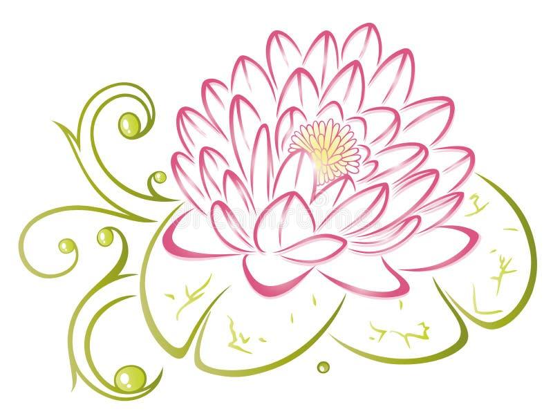 莲花,花,叶子 向量例证